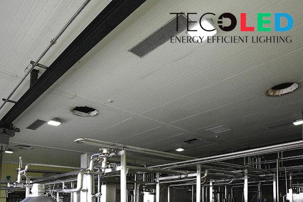 Lampy przemysłowe LED IP65 - oświetlenie w fabryce spożywczej