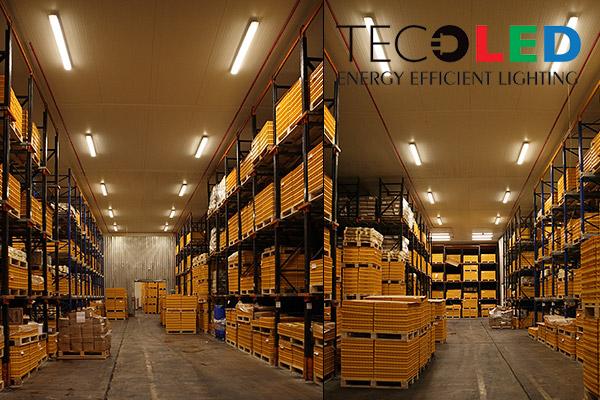 Świetlówki LED T8 G13 - zastosowane w oświetleniu magazynów i hal produkcyjnych
